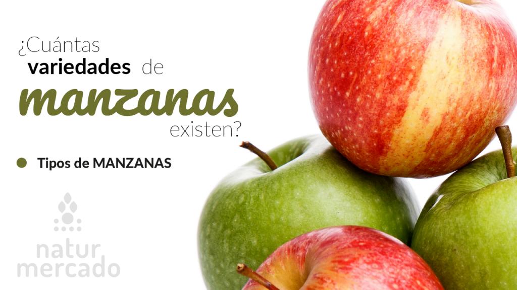 ¿Cuántas variedades de manzanas existen? – Tipos de manzanas