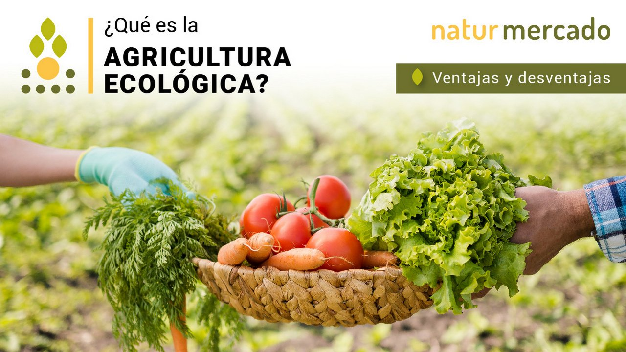 Que es la agricultura ecologica