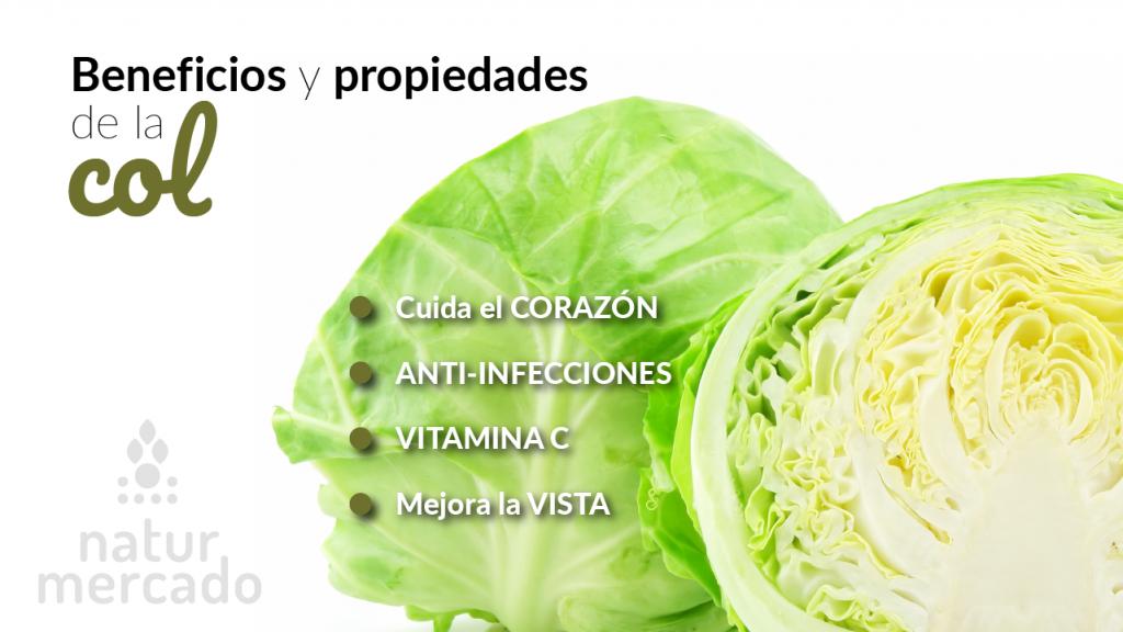 Beneficios y propiedades de la col