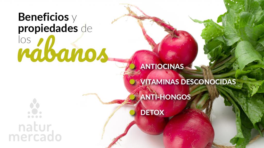 Beneficios y propiedades de los rábanos